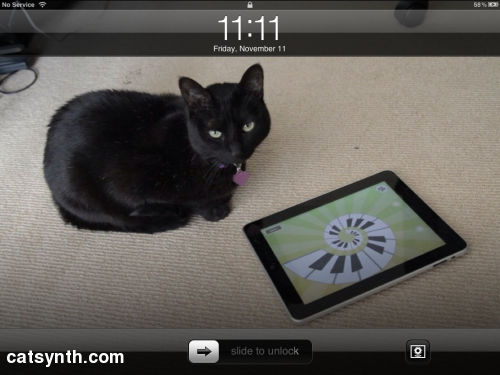 Luna on iPad at 11:11