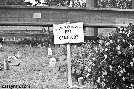 pet_cemetery_c