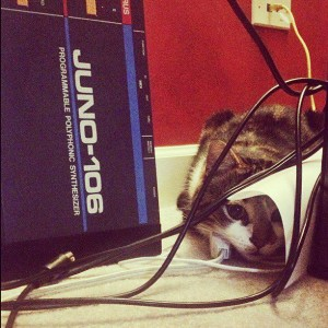 Cat and Juno 106