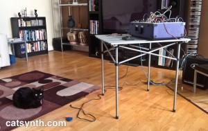 Luna and modular synth