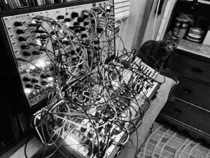 Dr J the Cat with modular synth