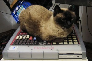 Mimi and Roland SP-808