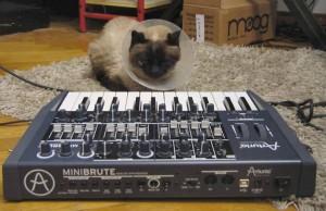 Mimi and Minibrute