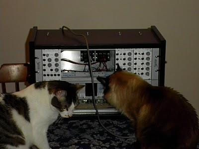 Ikea Rast modular and cats