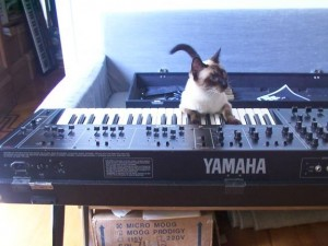 Cat and Yamaha CS30L