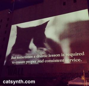 Henri the existential cat
