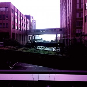 High line in purple