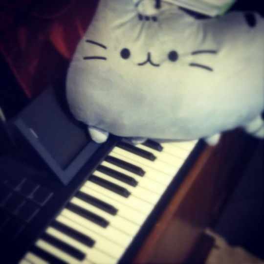 Plush Cat and Keyboard