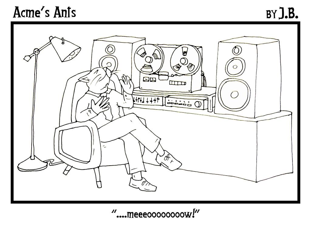 Acme's Ants