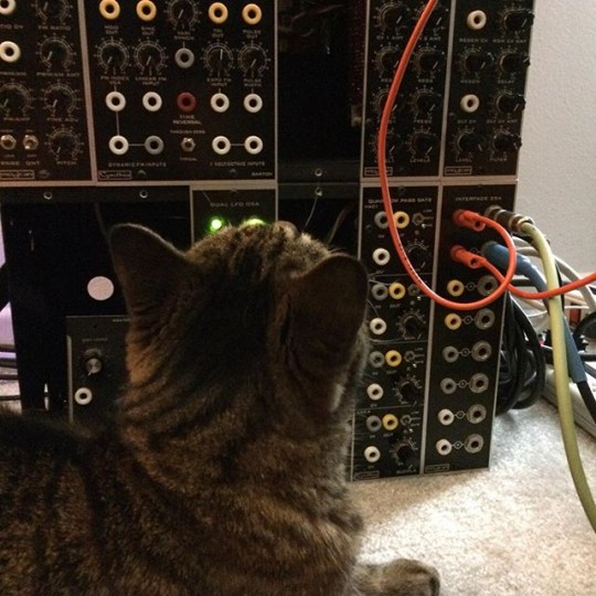 Motu and Modular synth