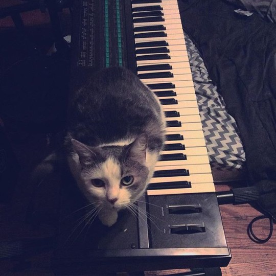Cosey and Yamaha DX7