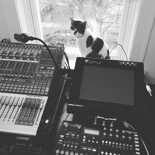 Cat with Lemur and Elektron Analog Four