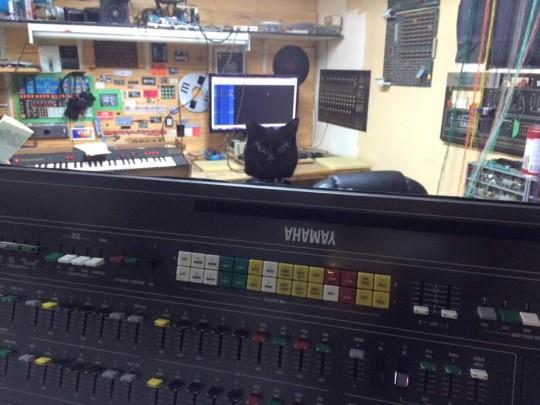 Cat and Yamaha CS-80