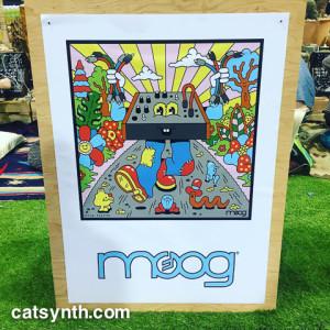 Moog cartoon