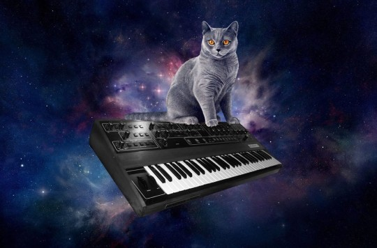 Cat on Prophet 5 in space