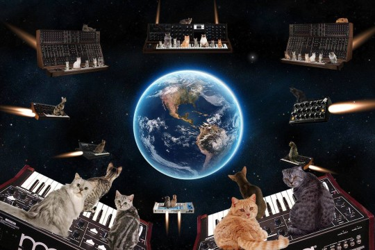 Cats on Moog synthesizers invading earth